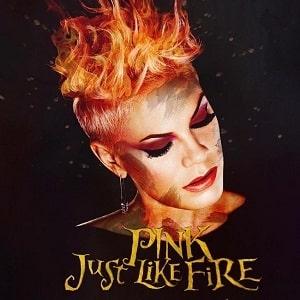 موزیک ویدیو Pink - Just Like Fire