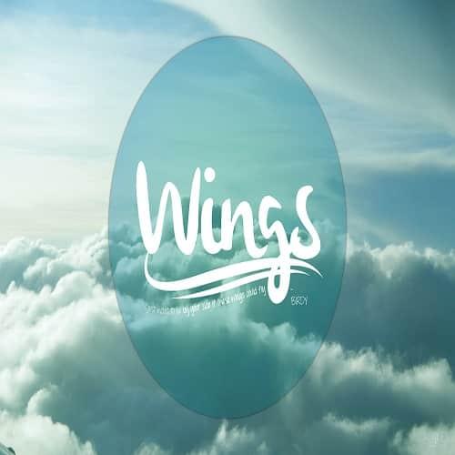 موزیک ویدیو Wings