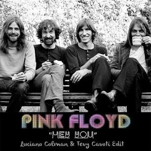 موزیک ویدیو Pink Floyd - Hey You