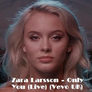 موزیک ویدیو Zara Larsson - Only You
