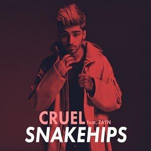 موزیک ویدیو Snakehips - Cruel ft. ZAYN