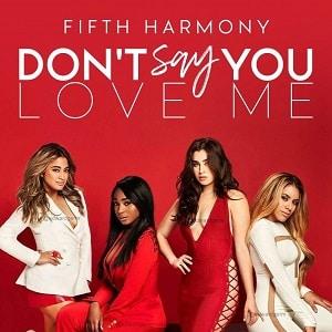 موزیک ویدیو Fifth Harmony - Don't Say You Love Me