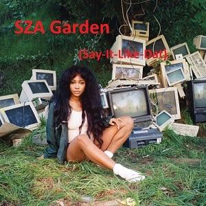 دانلود موزیک ویدیوی SZA-Garden-Say با زیرنویس فارسی
