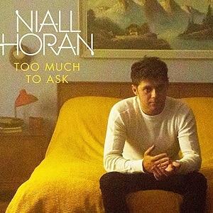 موزیک ویدیو nail horan too much to ask با زیرنویس فارسی