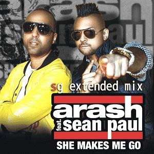 دانلود موزیک ویدیو She Makes Me Go از Arash Feat Sean Paul با زیرنویس فارسی