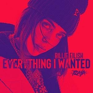 موزیک ویدیو Billie Eilish - everything i wanted با زیرنویس فارسی