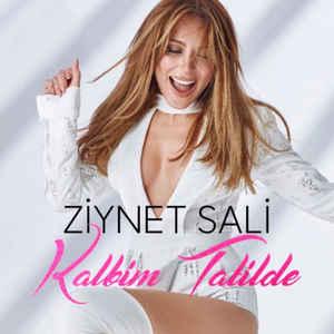 موزیک ویدیو Kalbim Tatilde از Ziynet Sali با زیرنویس فارسی و ترکی