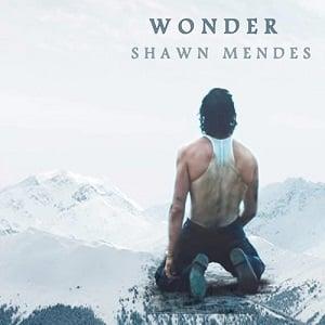 موزیک ویدیو Shawn Mendes - Wonder با زیرنویس