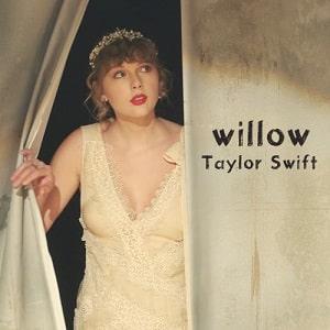 موزیک ویدیو تیلور سوئیفت Taylor Swift - willow با زیرنویس