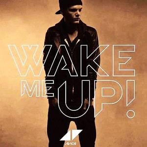 موزیک ویدیو Avicii - Wake Me Up با زیرنویس